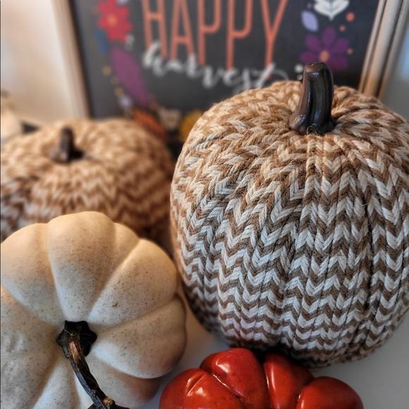 Pumpkin, Large, Threshold Textured Braiding